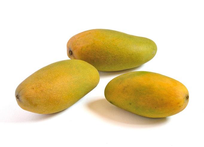 mango dasheri