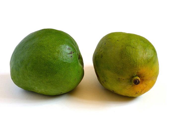 mango mulgua